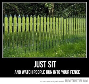 funny-fence-camouflage-grass