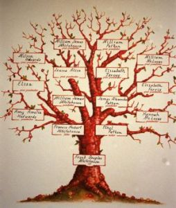 070811-Naional-Genealogy-at-a-Glance-news